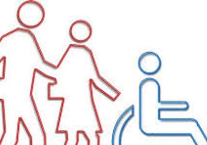 """Disabilità, parlamentari Pd """"Importanti novità nel dl sulla P.A."""""""