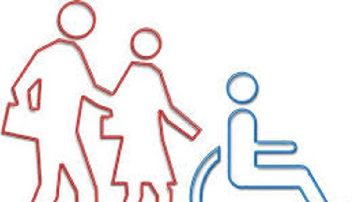 Disabilit parlamentari pd importanti novit nel dl for Parlamentari del pd
