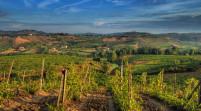 """Campolibero, Vaccari """"Svolta storica per l'agricoltura italiana"""""""