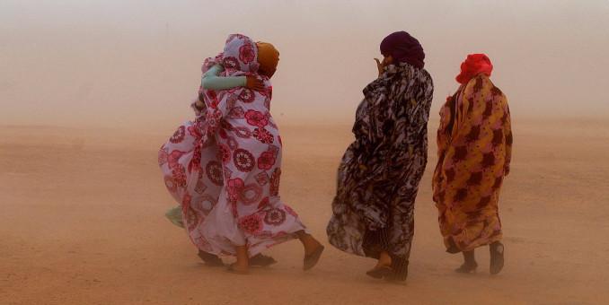 Saharawi, il sen. Vaccari a Madrid per la Conferenza europea