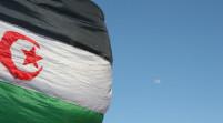 Saharawi, il sen. Vaccari guida missione nei campi profughi