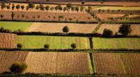 Imu agricola, i deputati modenesi Pd scrivono al Governo
