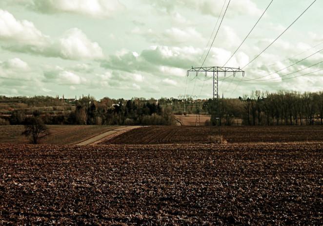 Imu agricola, deputati modenesi Pd scrivono a Renzi e Padoan