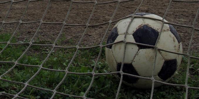"""Sport, Baracchi e Bortolamasi """"Ottimizzare spazi per garantire l'offerta"""""""