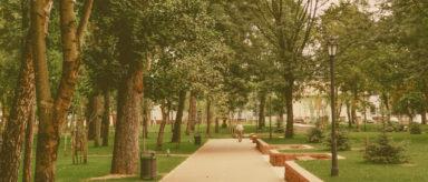 """Ambiente, Arletti e Mililli """"Luci e ombre del #green modenese"""""""