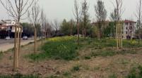 """Gd Modena """"Intitolare il parco di via Gerosa ai ragazzi di Utoya"""""""