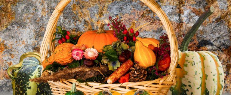 """Pd Castelnuovo, sabato 21 ottobre si cena """"A tavola con la zucca"""""""