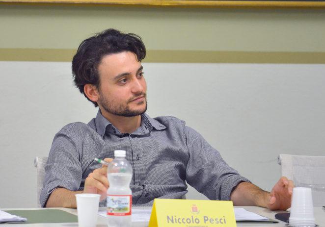 """Vignola, Pesci """"Sulla sicurezza la Giunta Pelloni naviga a vista"""""""