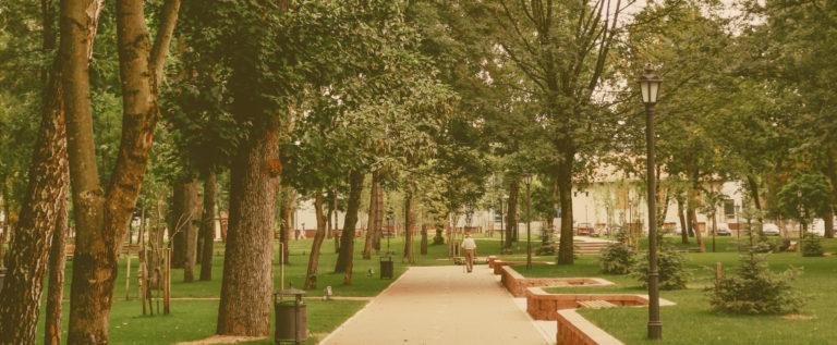"""Pd Carpi """"Parco Santa Croce, bene l'apertura della Fondazione"""""""