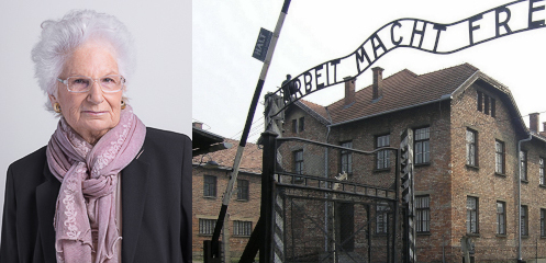 """Gruppi di maggioranza in Consiglio comunale a Modena """"Diamo la cittadinanza onoraria a Liliana Segre"""""""